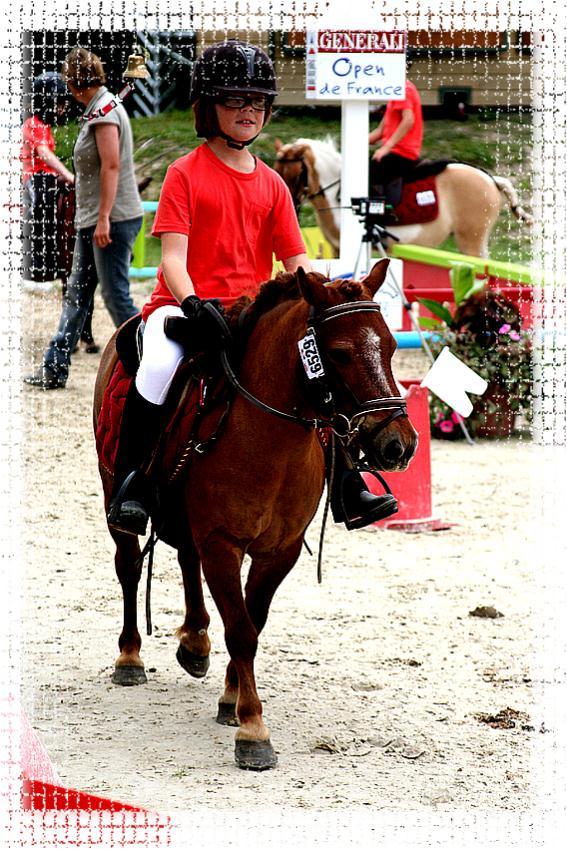 centre equestre mery es bois